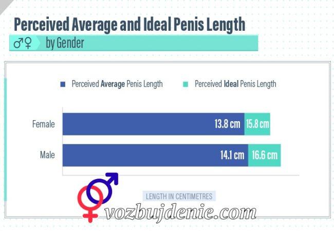 Оптимальный размер пениса для женщин для секса, белая жена сосет огромный черный при муже