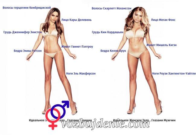 Идеальное тело глазами мужчин и женщин