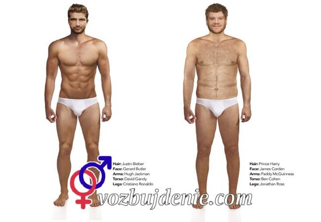 Основные параметры мужской сексуальности, как определить